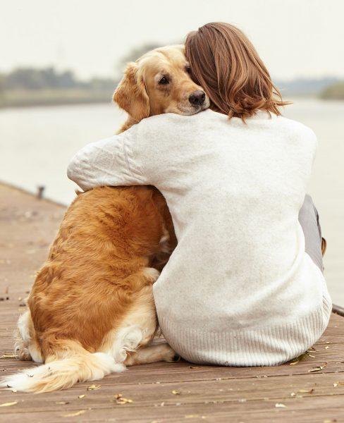 Blog Canino