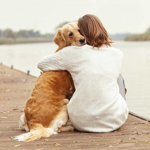 flexi® honden-blog